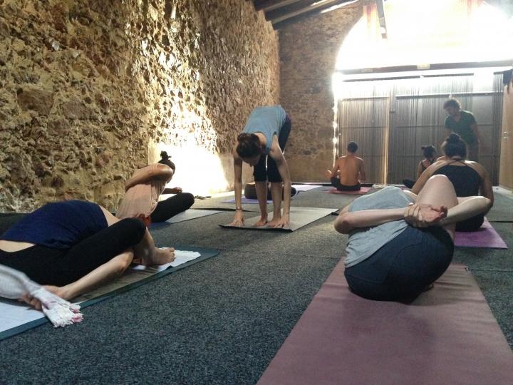 Celra 2017 yoga