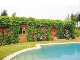 Mallorca/casa pisci dia